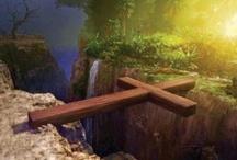 Awesome Creator God! / by Lynn Williams
