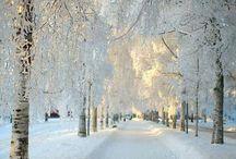 Hiver - Winter