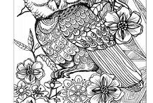 owls / gemalte/gezeichnete Eulen