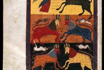 Medieval illustrations & manuscripts