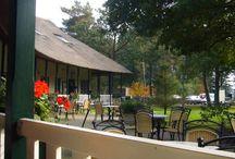 Vakantie in Drenthe / Lieflijke wellness vakantieboerderijtjes boerderijtjes De Egel & De Eekhoorn te huur in Drenthe