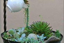 Mini-jardins