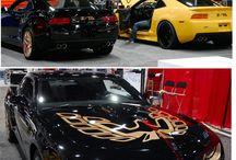 Car brand FIREBIRD