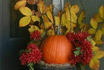 Autumn / by Susan Greenwood