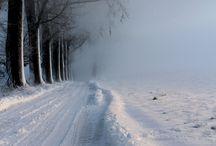 Winter Wonderland / by Ursula Keogh