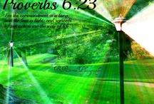 Proverbs 06