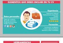 Currículum Vitae / Información relacionada con el Currículum Vitae.