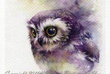 OWL BUHO