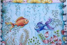 Secret garden - Fishes