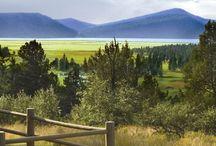 Ranch Resorts/Dude Ranches