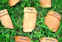 Terracotta labels (broken pots)