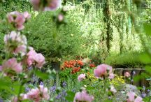 Trips for garden enthusiasts
