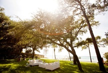 Our Wedding 9/29/12 / by Tarah McKinnon