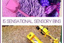 Sensory bins / by Shelley Brown