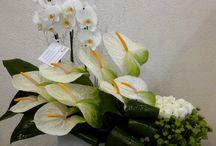 arteglos flores