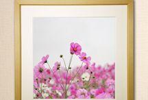 花と風景画 エアルト y2-hiro