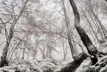 Elurra-Nieve-Snow