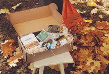 Produkty z Boxów