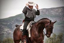 Campo, caballo, galgo y toro