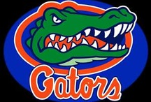 Florida Gators / by Dana Wait