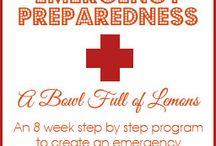 Survival Skills / Because emergency preparedness is just common sense.  Ideas for getting prepared and teaching my kids important survival skills!