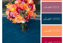 Colours, colours / colour (or color)  palettes and inspiration  / by Emma Crochets