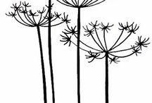 Silhouets plantlife