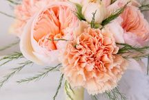 Coral & Peach wedding mood