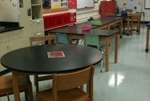 Biology Classroom / Ideas to use and incorporate in my classroom