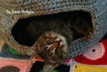 CAT CAVE AND CARRIER TO VET.