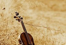 Life, Love, and Violins / I love my violin and the joy it brings to my life.