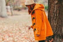 fall . orange
