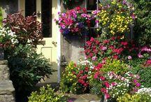 Hometalk Garden Inspiration
