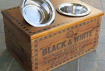 Repurposed, Reused, Recycled / Repurposing is the new black.