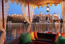 Magnificent India