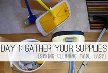 Deep Cleaning in 31 days! / by Nikki Scharf