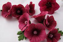 gumpaste flowers / by Jeanette Saunders