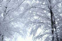 ★ Winter retreat