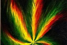 weed n all