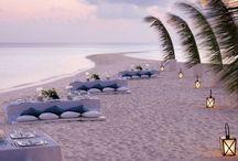 •Maldives•