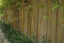 garden bamboo ideas