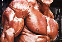 Jay Cutler Bodybuilder / Jay Cutler is a bodybuilder who won numerous bodybuilding titles including the Mr Olympia title on 4 separate occasions.