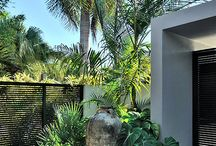 tropical looking gardens