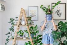 Escalera para plantas