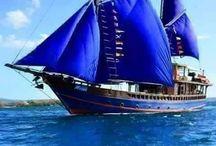 WaterShips