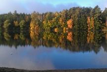 Camp Walden / The seasons at Camp Walden