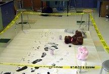 Detective / Crime Scene
