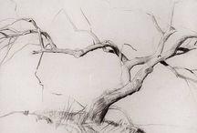 Inspiration: Drawing