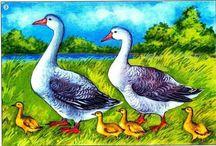 домашні тварини та птахи