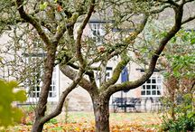 Autumn At Worton Hall / Here at Worton Park we can't help but admire the autumn colours, the trees are bursting with vibrant shades ... #WortonPark #WortonHall #Autumntrees  With a some of our fave Pinterest posts :)